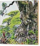 Gnarled Tree  Wood Print