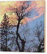 Gnarled Tree Silhouette Wood Print
