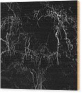 Gnarly Night Oak Wood Print