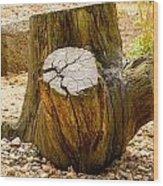Gnarly Stump Wood Print