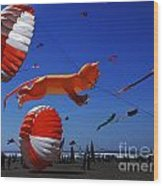 Go Fly A Kite 1 Wood Print