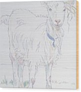 Goat Drawing Wood Print