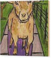 Goat Skateboarding Wood Print by Jay  Schmetz