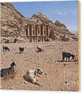 Goats In Front Of The Monastery At Petra In Jordan Wood Print