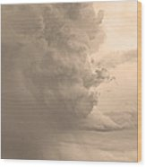 Gobbled Up By A Storm  Sepia Wood Print