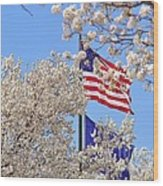 God Bless America March 2014 Wood Print
