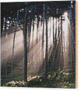 God Light Wood Print