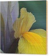 Goddess Of The Rainbow Wood Print
