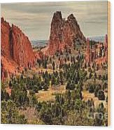Gods Garden In Colorado Wood Print