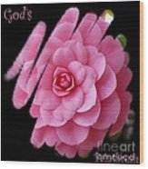 God's Paintbrush Wood Print