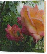 God's Roses Wood Print