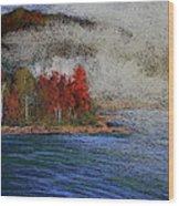 Goff Point Fog Wood Print