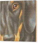 Goggie Daschund Wood Print