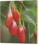 Gojo Berries Wood Print