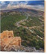 Golan Heights Wood Print