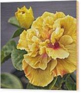 Gold Beauty Wood Print