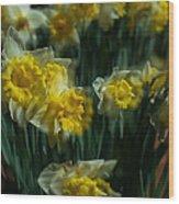 Gold Daffodil Wood Print