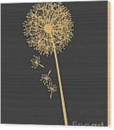 Gold Dandelion Wood Print