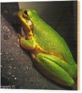 Gold Flake Frog Wood Print