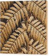 Gold Leaf Fern Wood Print