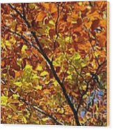 Gold Leaves Of Autumn Wood Print