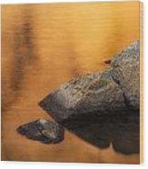 Gold Wood Print