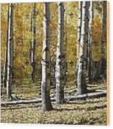 Golden Afternoon Wood Print