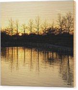 Golden And Peaceful - A Sunset On Lake Ontario In Toronto Canada Wood Print