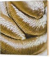 Golden Art Wood Print