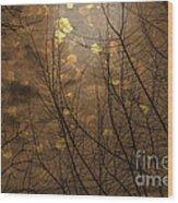 Golden Autumn Abstract Sky Wood Print