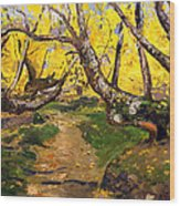 Golden Autumn - Drenova Wood Print