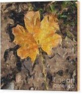 Golden Autumn Maple Leaf Filtered Wood Print