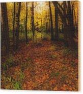Golden Autumn  Wood Print
