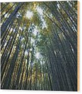 Golden Bamboo Forest Wood Print by Aaron Bedell