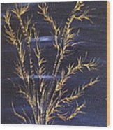 Golden Bamboos 3 Wood Print by Pretchill Smith