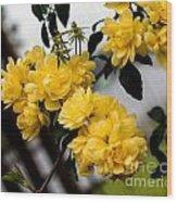 Golden Blooms One Wood Print