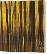 Golden Blur Wood Print by Anne Gilbert