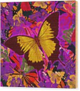 Golden Butterfly Painting Wood Print
