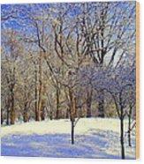 Golden Central Park Wood Print