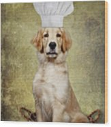 Golden Chef Wood Print by Susan Candelario