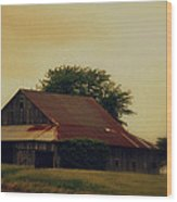 Golden Country Wood Print