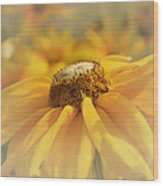 Golden Crown - Rudbeckia Flower Wood Print