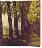 Golden Days Wood Print by Michael Swanson