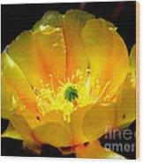 Golden Desert Flower Wood Print