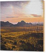 Golden Desert Wood Print