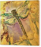 Golden Dragonfly Wood Print by M C Sturman