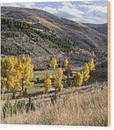 Golden Fall In Montana Wood Print