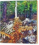 Golden Ferns Wood Print