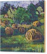 Golden Fields Of Door County Wood Print