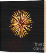 Golden Fireworks Flower Wood Print
